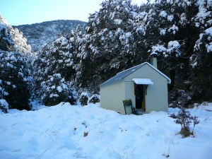 Branch Creek Hut